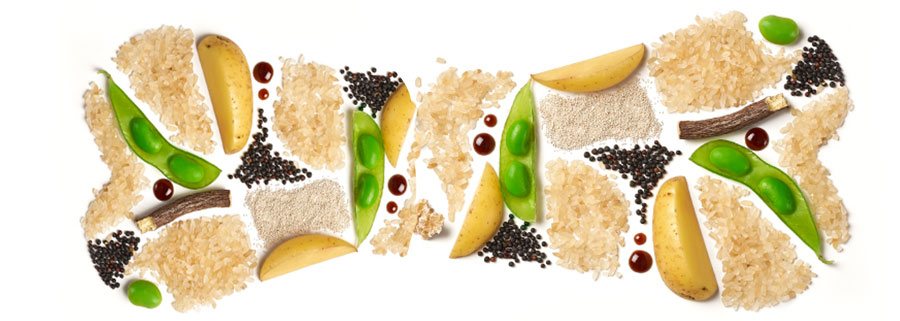 rice bone layer 2